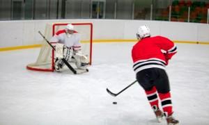 Ice Hockey, Ice-skating, Goal.